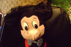 Mickey head shot before